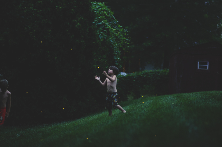 catching_fireflies_danobk